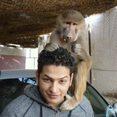 Знакомства с AhmedRoushdy